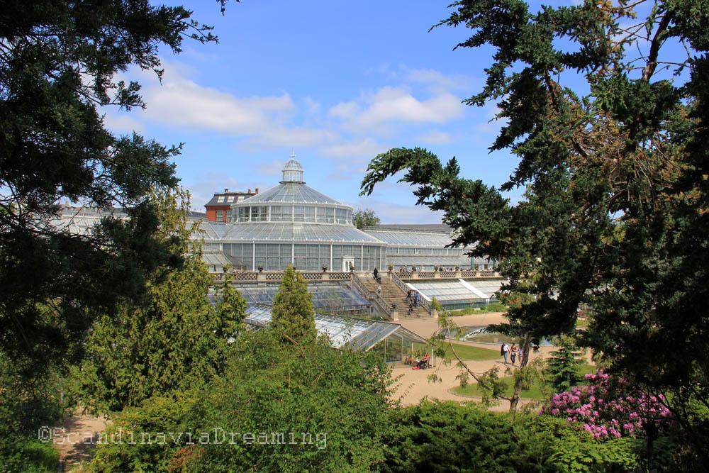Grande serre du jardin botanique de copenhague vue de la for Jardin botanique hiver 2015